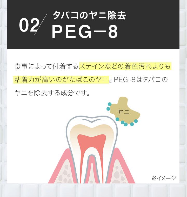 01 汚れが付着している歯の状態