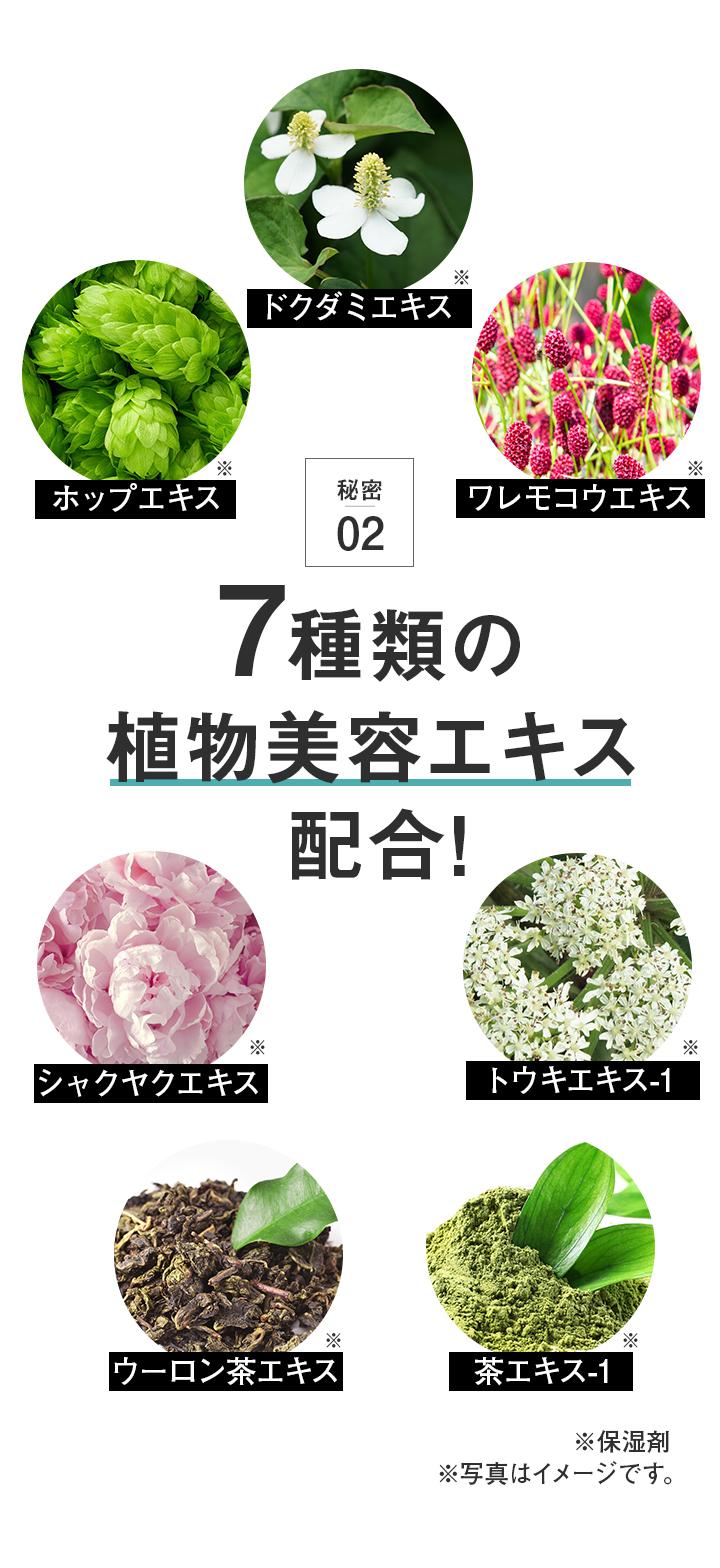 秘密02 7種類の植物美容エキス配合!